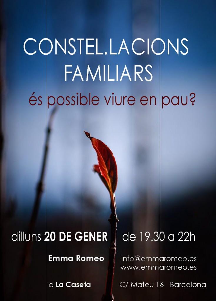 constel-lacions-familiars
